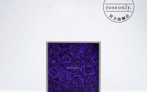 roseonly进口紫色永生花礼盒_星空礼物街