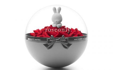 roseonly永生玫瑰礼盒 花球兔玫瑰公仔_星空礼物街