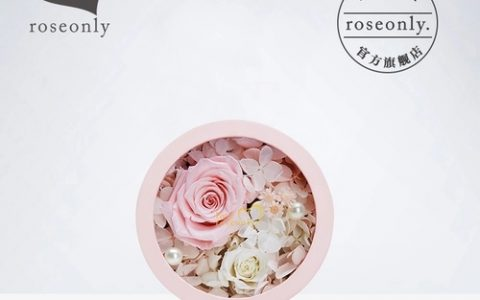roseonly永生花玫瑰圆形礼盒_星空礼物街