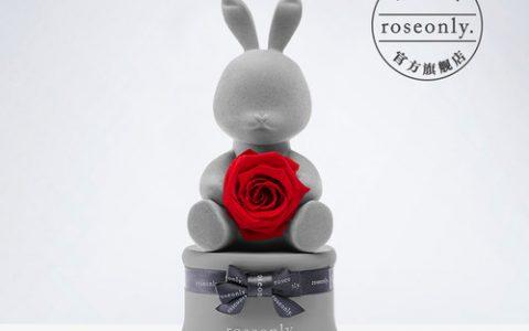 roseonly甜心兔音乐盒永生花公仔礼盒_星空礼物街