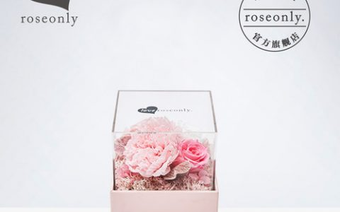 love roseonly水晶之恋永生玫瑰花礼盒_星空礼物街