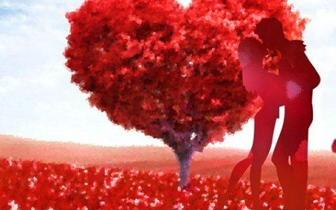 一年有多少个情人节,每个月14号都是什么情人节