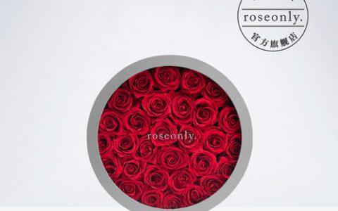 roseonly永生花经典巨型圆礼盒_星空礼物街