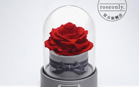 roseonly星座永生玫瑰花音乐盒_星空礼物街