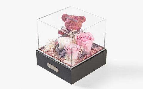 苔藓小熊永生花礼盒